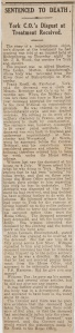 newspapercrop