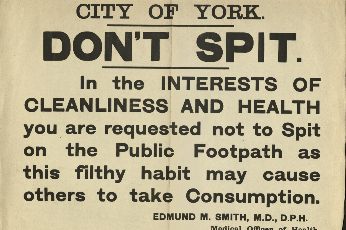Fever, flagstones, and flushing: an introduction to York's health carerecords