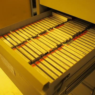 Cassette tapes relating to oral history collection